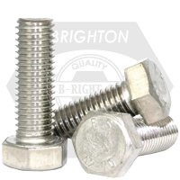M16-2.00x25 MM,(FT) DIN 933 HEX CAP SCREWS COARSE STAINLESS A2
