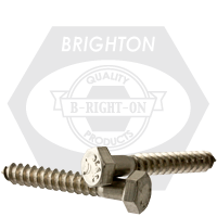 "1/2""-6x10"" STAINLESS STEEL 316 HEX LAG SCREW"